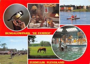 Netherlands Bungalowpark De Eemhof Zuidelijk Flevoland Center Parcs Zeewolde