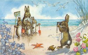 Molly Brett Fantasy~Quite Still Please Rabbits~Camera to Beach~Crab~Medici PC
