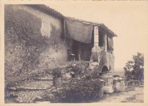 5by7 Photograph; Cote d´AZUR ,  Dans la Campagne , 00-10s