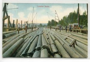 Lumber Scene Logging Raft Pacific Northwest 1910c postcard