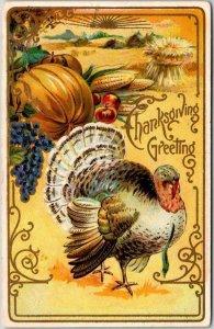 Vintage THANKSGIVING Embossed Greetings Postcard Turkey / Fruit / 1908 Cancel