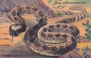 TEXAS Diamond Back Rattle Snake, 30-40s