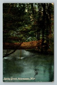 Kalamazoo MI-Michigan, Spring Brook, Vintage c1910 Postcard