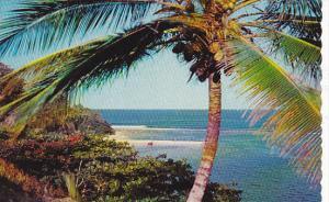 San San Bay Portland Jamaica