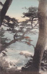 YOKOHAMA, Japan, 1900-1910's; Sea Shore of Yokohama