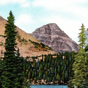 Vintage 1930s Reed's Park Mirror Lake Wasatch National Forest Postcard Utah