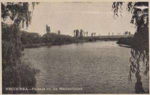 Necochea River Real Photo Vintage Argentina Postcard
