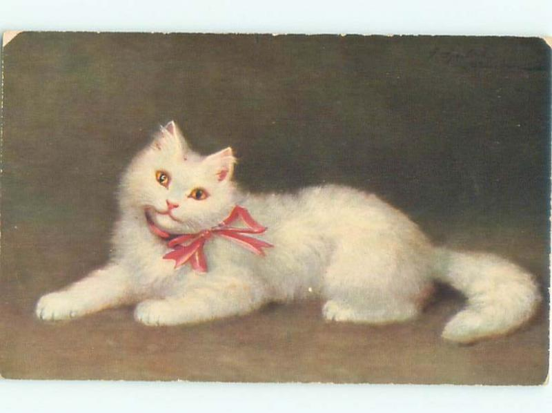 Pre-Linen CUTE WHITE SMILING KITTEN CAT AC5454