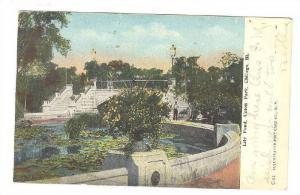 Lily Pond, Union Park, Chicago, Illinois, PU-1908