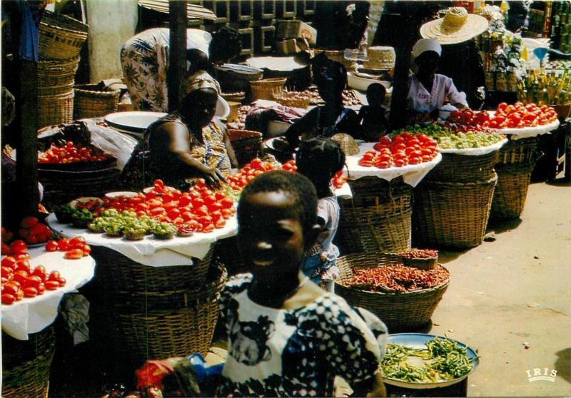 African market tomatoes sellers scene postcard
