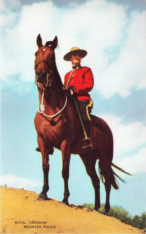 Canada Mountie on Horse RCMP Original 1940s Postcard