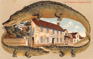S 550 The Museum, St. Augustine, Florida USA Alligator Border Unused