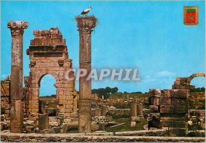 Modern Postcard Volubilis Ruins of the Temple