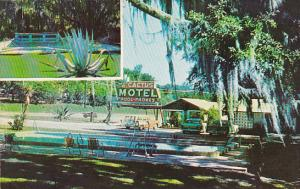 Florida Tallahassee Cactus Motel With Swimming Pool