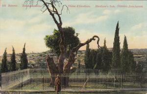 Abraham's Oak, Mamre, Palestine, 00-10s