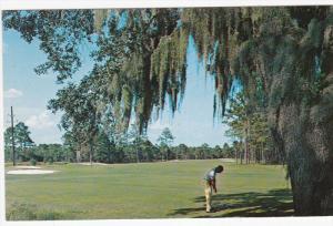 Quail Creek Golf Course, Fourteenth Hole, MYRTLE BEACH, South Carolina, 40-60´s