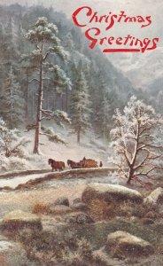 The Depth of Winter #2 , Trees , 1900-10s ; TUCK 9567