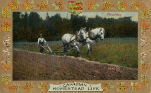 Homestead Life , Canada , 1900-10s ; Ploughing