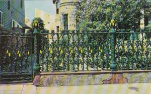 Louisiana New Orleans Corn Stalk Fence