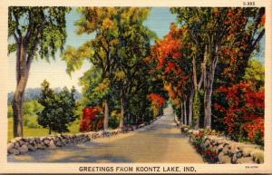 Indiana Greetings From Koontz Lake Curteich