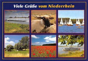 Viele Gruesse vom Niederrhein multiviews Lake Boats Sheeps Flowers Field