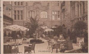 Palmenhof Hotel Der Furstenhof Gardens Antique German Postcard