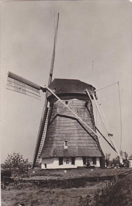RP: Windmill ; Hollands Molenlandschap , PU-1954