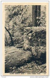 Seneca Trail , Cook Forrest Park , Pennsylvania , pu1942
