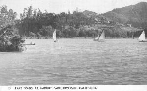 Fairmount Park Riverside California Lake Evans Postcard Rubidoux 5688