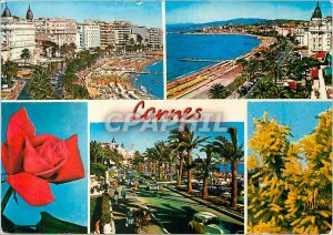 Modern Postcard The azure coast of Cannes palaces from the Croisette La Crois...