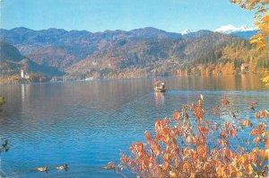 Slovenia Postkarte Bled lake scenic landscape sailing boat ducks