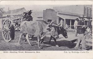 Ox Cart Hauling Wood , MATAMOROS , Mexico , PU-1908