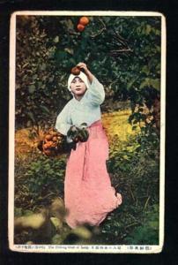 034387 KOREAN Girl in native dress pick-up fruit Old