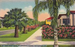 Florida Saint Petersburg First Street North The Sunshine City