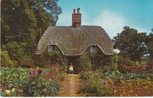 Post Card Hampshire New Forest A New Forest Cottage