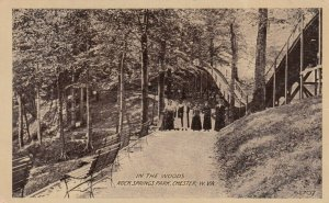 CHESTER , West Virginia, 1907 ; Rock Spring Park , In the Woods