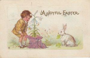 EASTER, 1900-10s; Joyful, Boy and Rabbit admiring Lillies