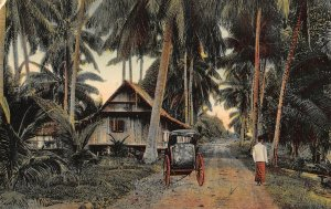 Singapore Native Village Houses Palm Trees Cart Postcard