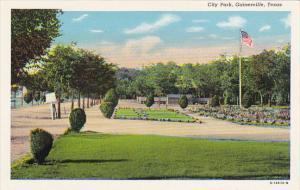 Texas Gainesville City Park Curteich
