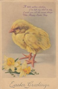 EASTER Greetings, 1900-10s; A chick and daffodils, poem