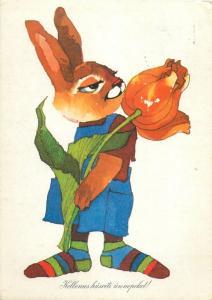 Hungary Easter bunny rabbit caricature postcard