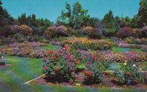 William Land Park Sacramento California 1961
