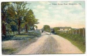 Horse-Drawn Carriage on Pickets Springs Rd, Montgomery Alabama, 00-10s