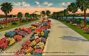 Florida Clearwater Million Dollar Causeway
