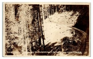 RPPC Pacific Railway & Navigation Co. Salmonberry River Trestle, OR Postcard