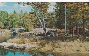 Partial View, Greetings From Muskoka, Ontario, Canada, 1940-1960s