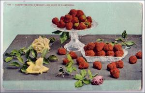 Midwinter Strawberries & Roses, CA