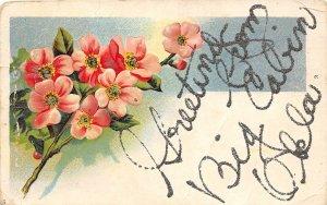 F84/ Big Cabin Oklahoma Postcard 1908 Greetings from Big Cabin