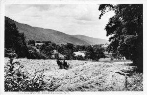 G22/ DeLancey New York RPPC Postcard 40s Spruce Lodge Farm Plow Occupational