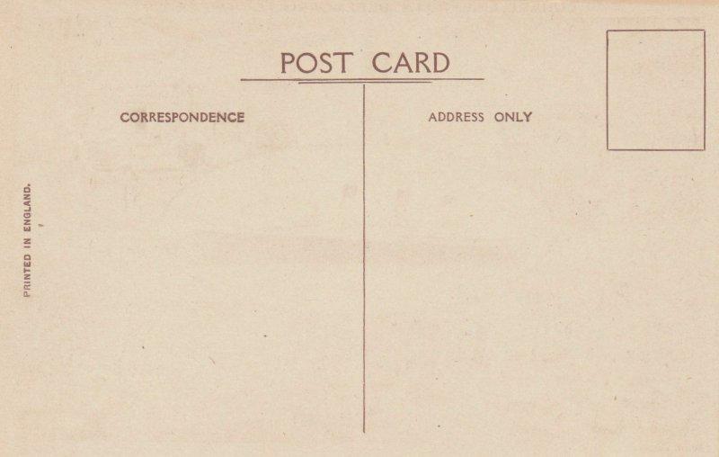 CUNARD LINE Ocean Liner R.M.S. BERENGARIA (Ex Imperator) , 1920-30s